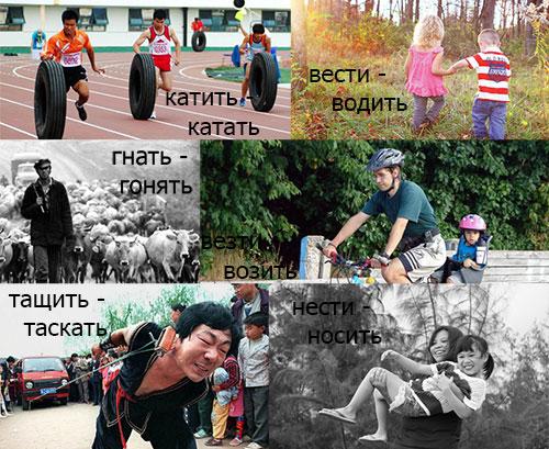 Глаголы движения в русском языке (часть 2)
