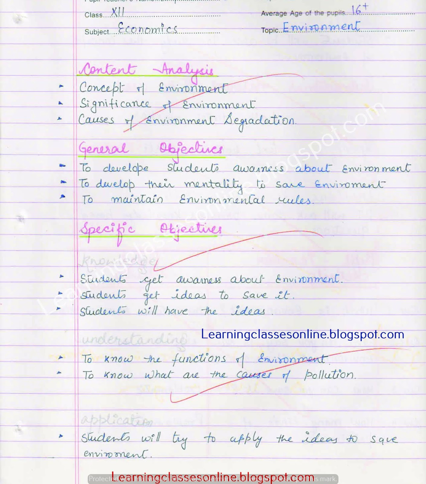 BEd lesson plan of economics on Environment