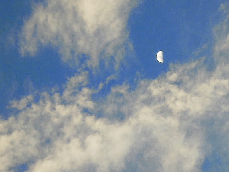 Photograph of the sky with clouds and a half moon