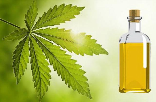 uleiul de neem este o metoda contraceptiva