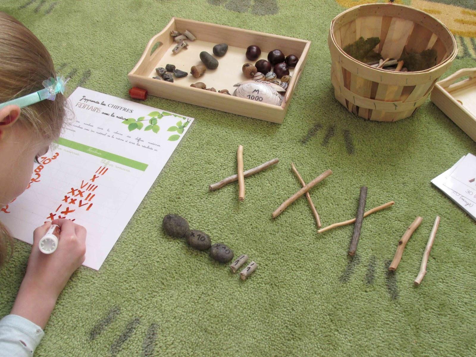 j 39 apprends les chiffres romains avec la nature crapaud. Black Bedroom Furniture Sets. Home Design Ideas