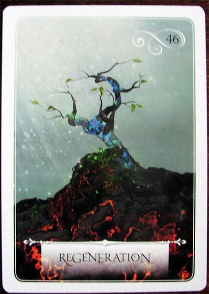 Rebirth Divination Card: A Bad Witch's Blog: Review: Wisdom Of The Oracle