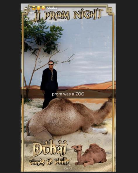 Mom Spends $25,000 on Camel, Sand, and Exotic Cars for Son's Prom
