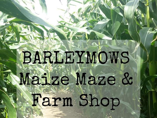 Barleymows Maize Maze & Farm Shop