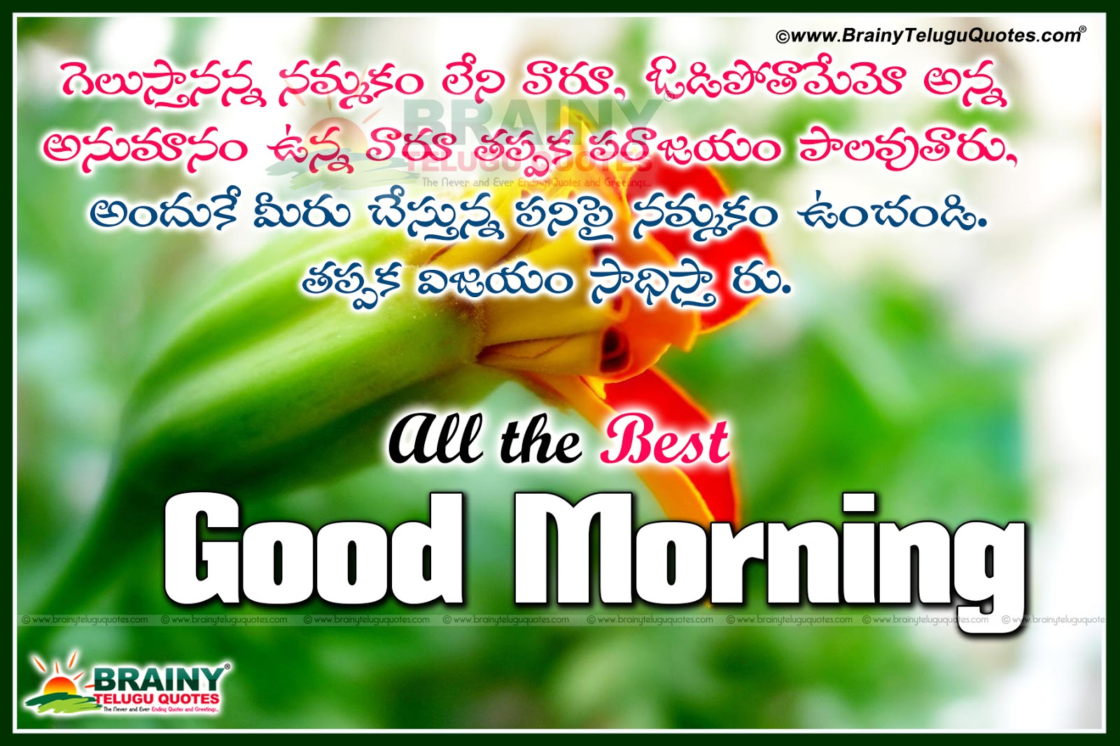 Brainy Quotes Telugu Best Good Morning Kavithalu With Inspirational Quotes