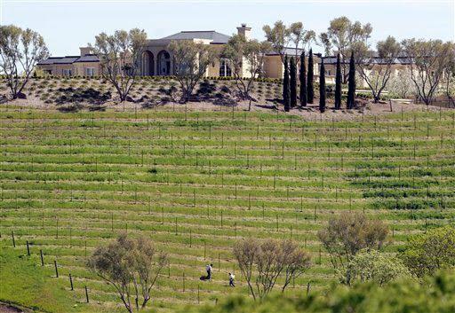 Vineyards at Yuri Milner's mansion