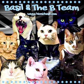 Basil & The B Team @BionicBasil™ 2019