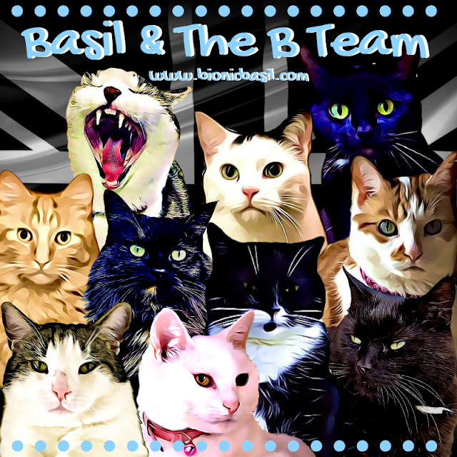 Basil & The B Team @BionicBasil™ 2019