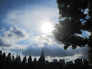 Beautiful afternoon at Shinjuku Gyoen :)