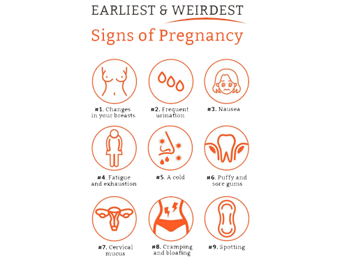 The Most Popular Early Signs of Pregnancy 1st Week | WOMEN CARE