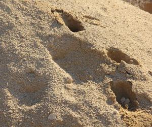 Cara menguji dan menghitung jumlah persentase kadar lumpur pada menurut sni 03 3976 1995 agregat halus adalah pasir alam sebagai hasil desintegrasi secara alami dari batu atau pasir yang dihasilkan oleh industri thecheapjerseys Image collections