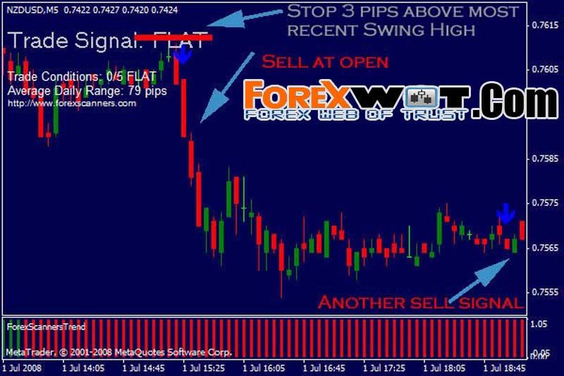 Short term forex trading or long term forex trading