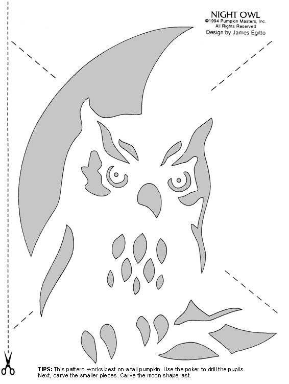 Easy and cute owl pumpkin carving templates ideas