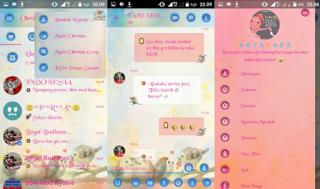 BBM Droid Chat v12.0.25 Love Birds Theme Base BBM v3.0.1.25 Apk Terbaru