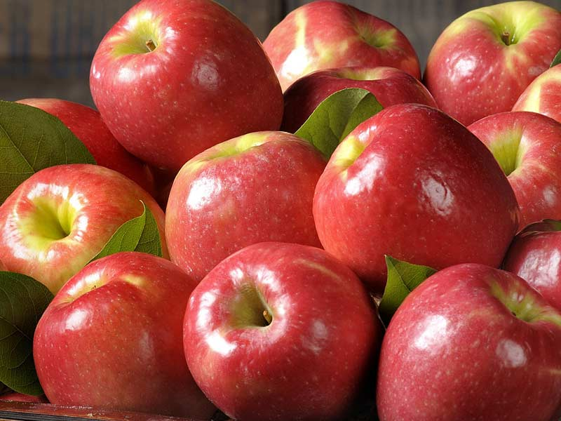 lady apple fruit pictures