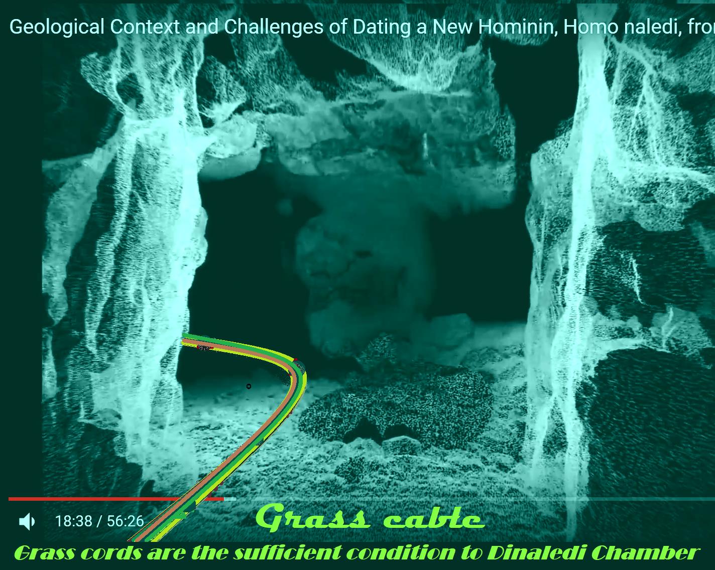 Homo naledi datingAngelfish dating Brisbane