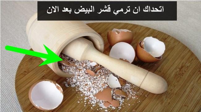 فوائد قشر البيض الكنز الصحي المجهول!! سبحان الذي لم يخلق شيء عبثا