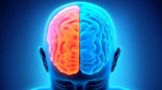 karakteristik otak kiri dan kanan