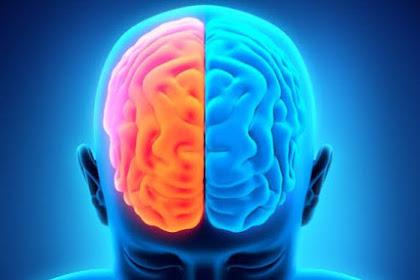 Cara Menyeimbangkan Otak Kiri dan Otak Kanan