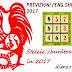 Previziuni Feng Shui 2017 | Stelele zburătoare în 2017