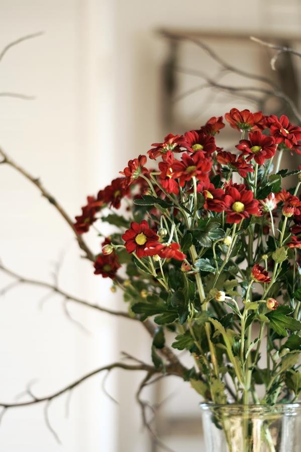 Blog + Fotografie by it's me! - dunkelrote Chrysanthemen und Zweige im Sonnenschein