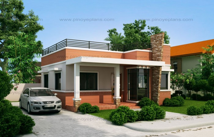 Small and simple but beautiful house with roof deck designs for houses  concept. One storey