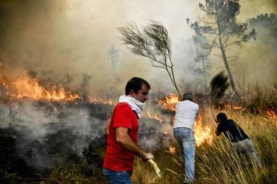PORTUGAL-FIRE-ENVIRONMENT