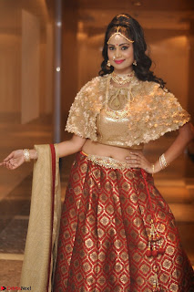 Mehek in Designer Ethnic Crop Top and Skirt Stunning Pics March 2017 027.JPG