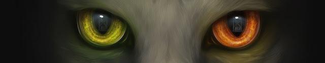 Evento: O Principe Gato e a Ampulheta do Tempo. 17