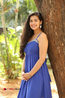 Actress Prasanna Stills in Blue Short Dress at Inkenti Nuvve Cheppu Movie Platinum Disc Function  0049.JPG