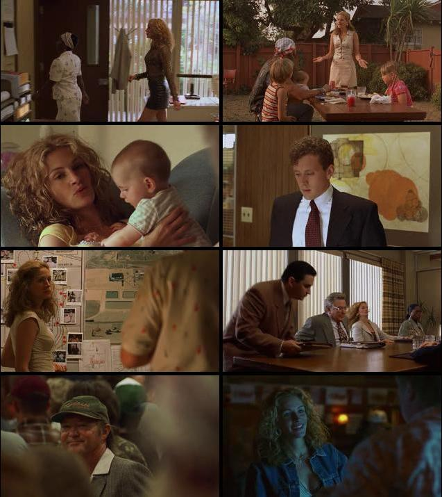 Erin Brockovich 2000 Dual Audio Hindi 720p BluRay