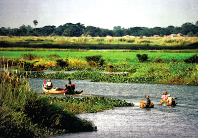 In the Irrawaddy Delta