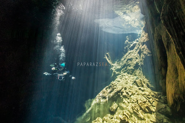 Scuba Diving, Underwater Photography, PADI, Learn Scuba, We Dive Manila, PaparazSea