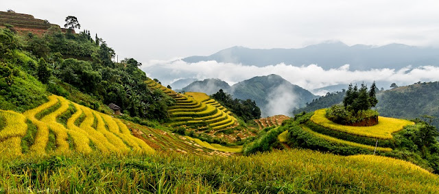 Ha Giang Upland - The Journey of Sharing 3