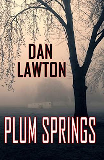 Plum Springs - coming-of-age literary suspense book by Dan Lawton