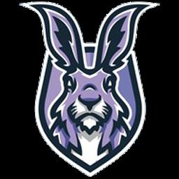 ikon foto kelinci
