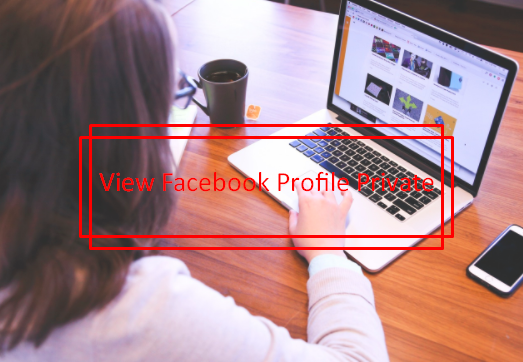 Facebook Private Profile Viewer