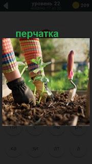 посадка ростков в землю с одной перчаткой на 22 уровне в игре 470 слов