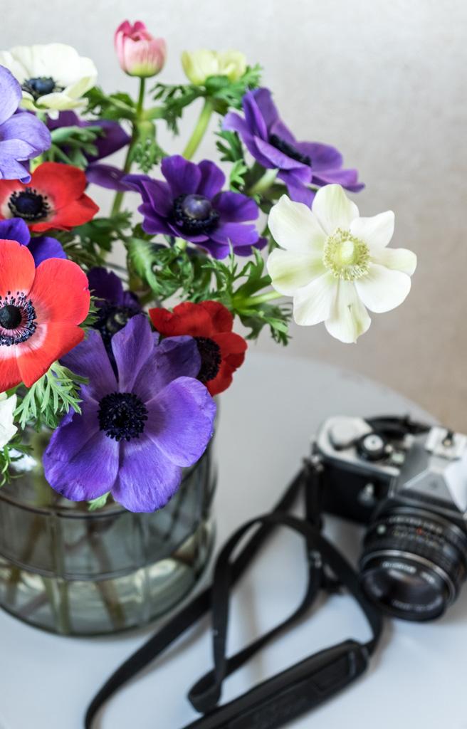 fim.works | Lifestyle Blog | ein bunter Strauß Anemonen, eine graue Glasvase, eine alte Kamera