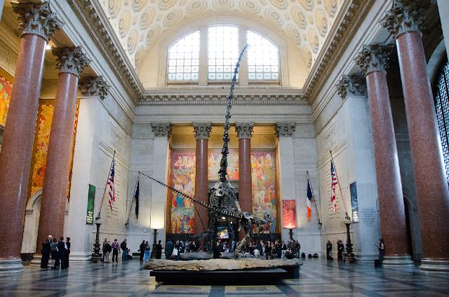 Ingresso mais barato para o Museu da História Natural em Nova York