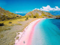 Look at the beauty of Pink Beach in Eastern Indonesia, So Fascinating!