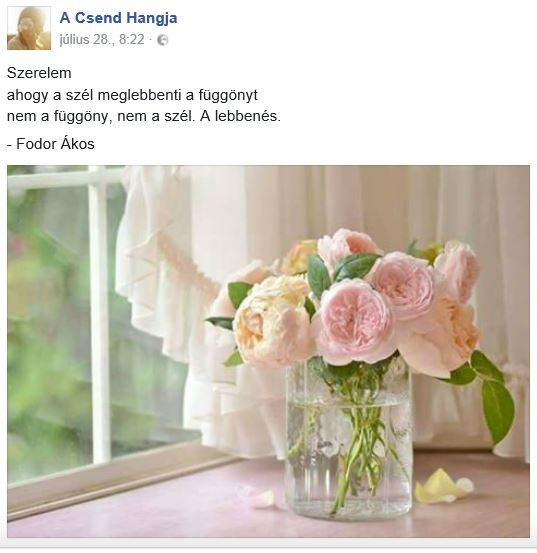https://hu-hu.facebook.com/ACsendHangja/