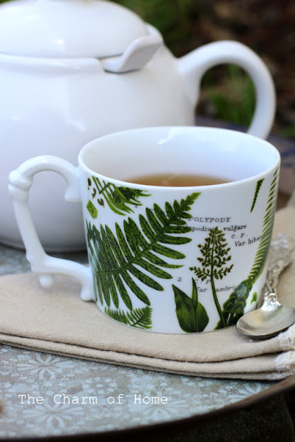 Late Summer Tea Among the Ferns