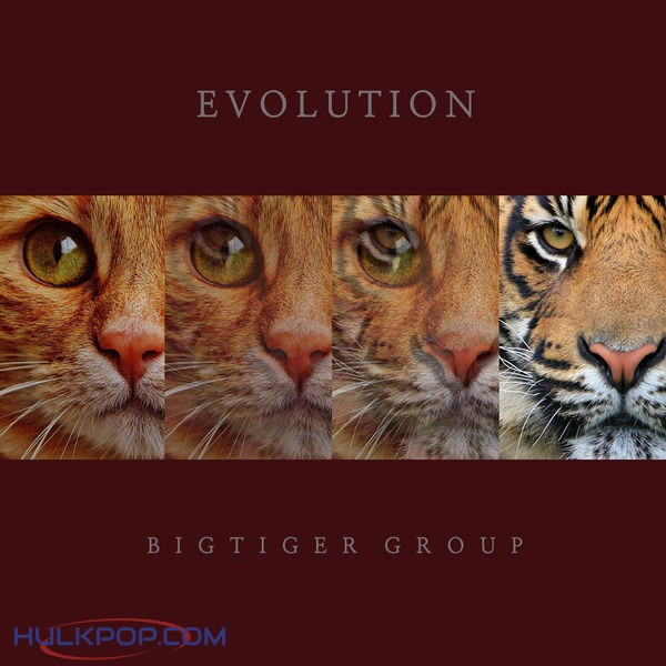 Bigtiger Group – Evolution