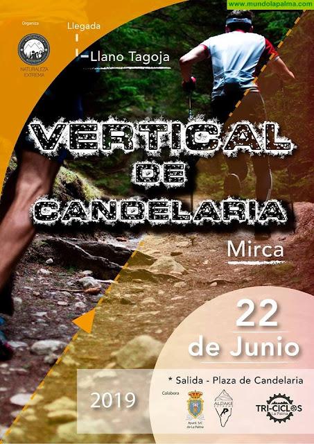 Vertical de Candelaria 2019 - Santa Cruz de La Palma