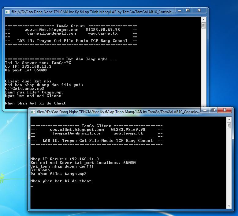lập trình mạng TCP Console C#