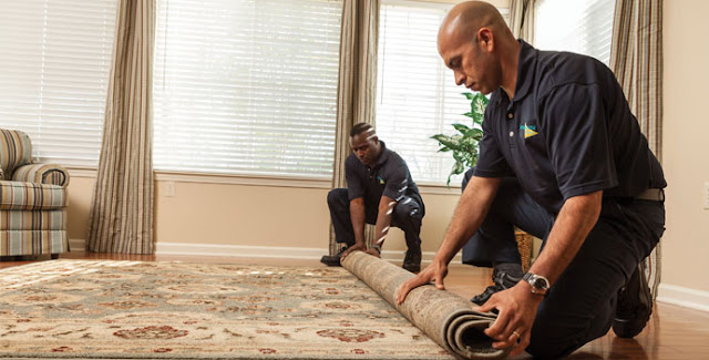 شركة رش مبيدات وتنظيف منازل