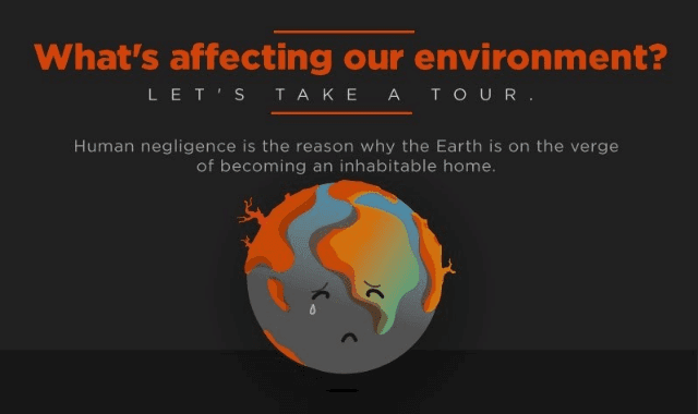 What's Affecting Our Environment?