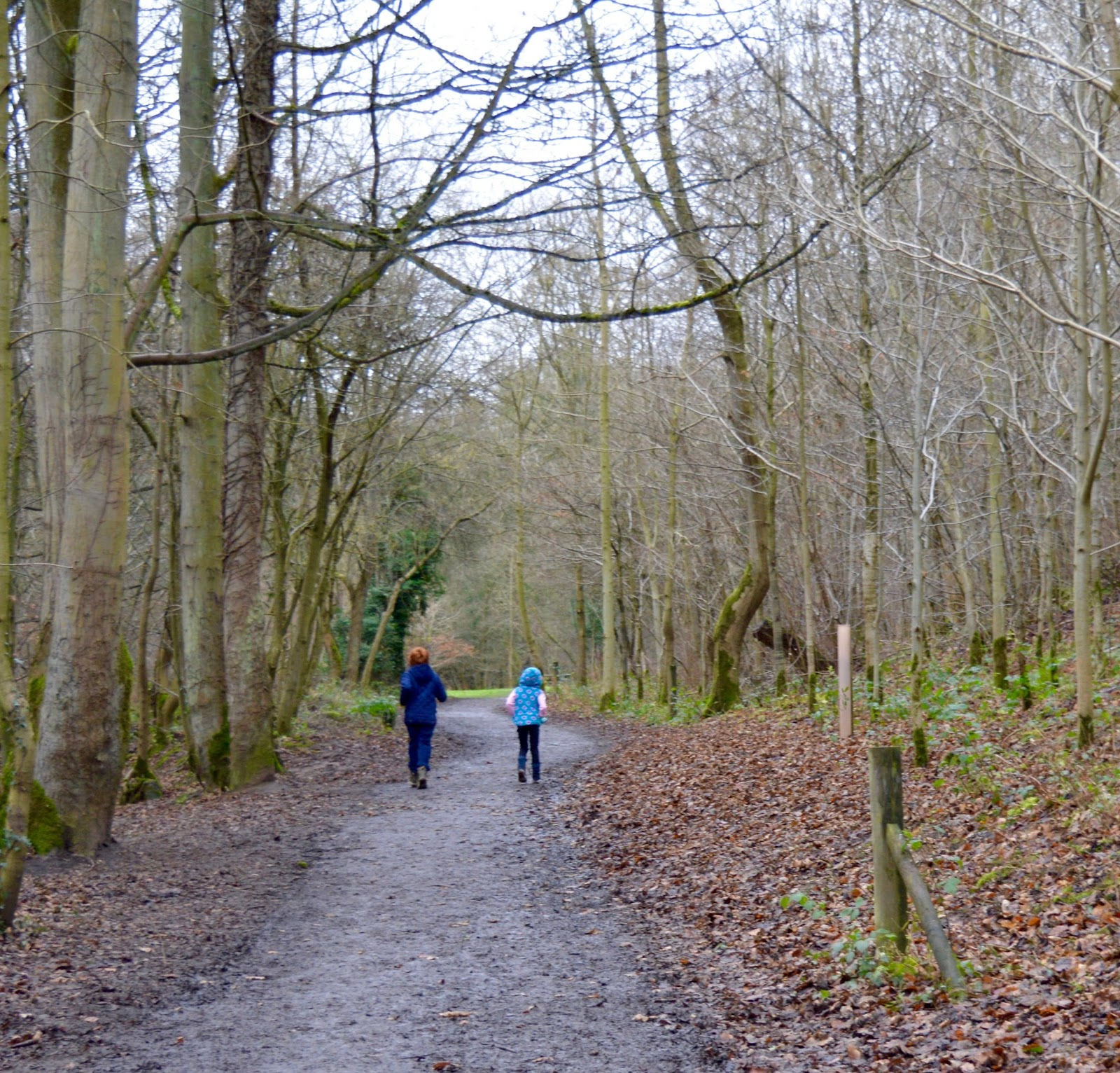 Our Visit to Plessey Woods - A FREE day out in Northumberland. It was very muddy and the perfect chance for Harry to put his GORE-TEX shoes through their paces - river path