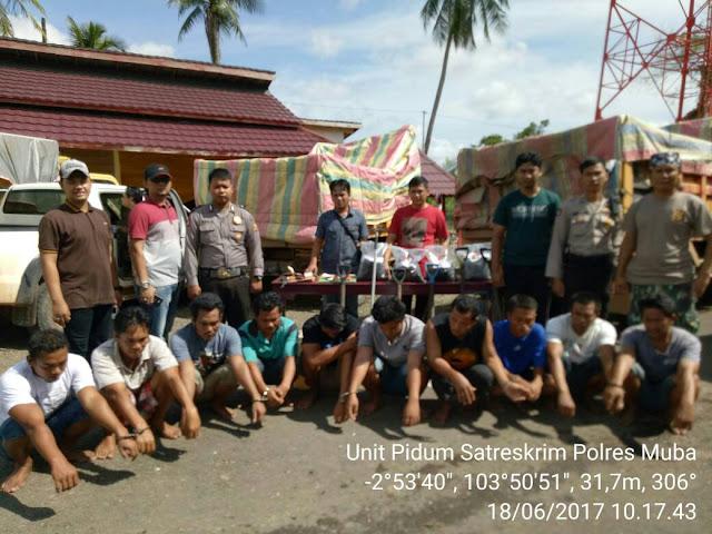 10 Orang Pencuri Biji Sawit Diamankan Polres Muba